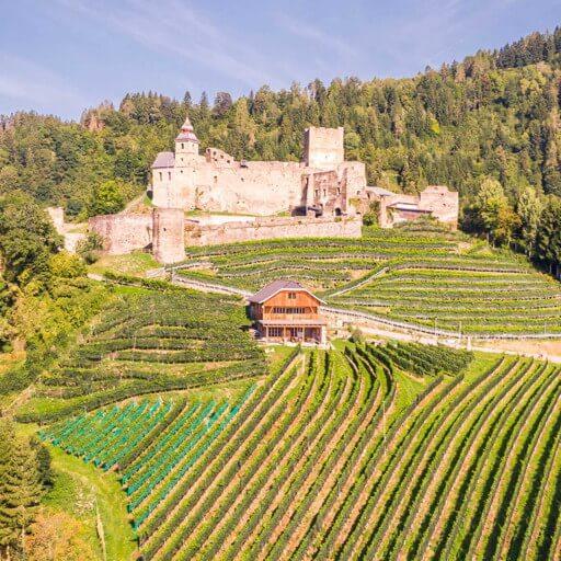 Burgverein Glanegg